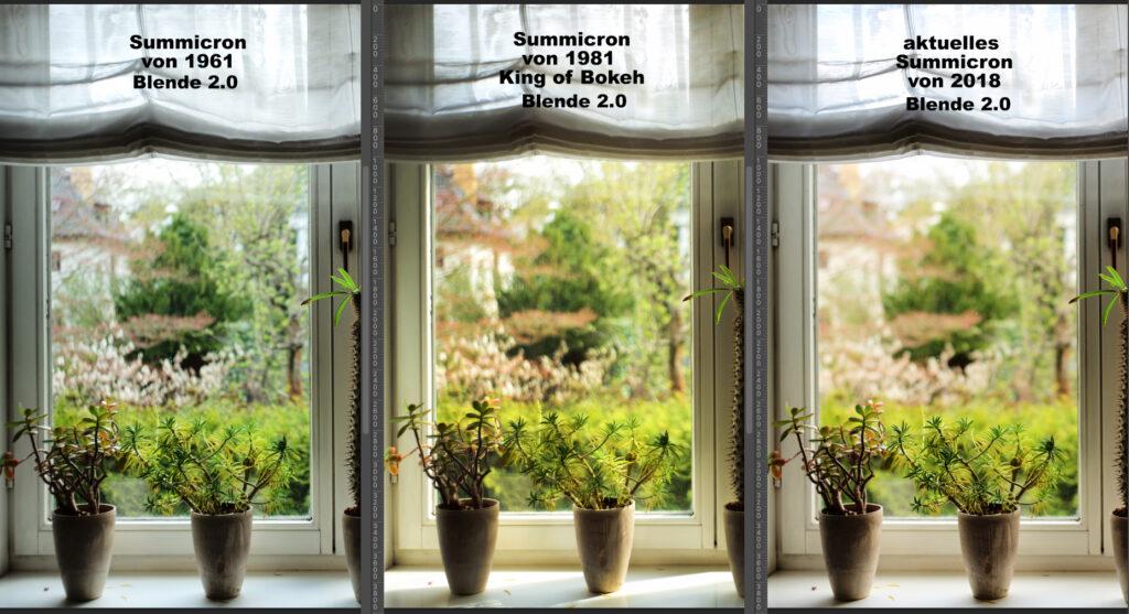 Vergleichsaufnahme mit drei unterschiedlichen Summicron von 1961, 1981 und 2018. Aufgenommen mit Blende 2.0